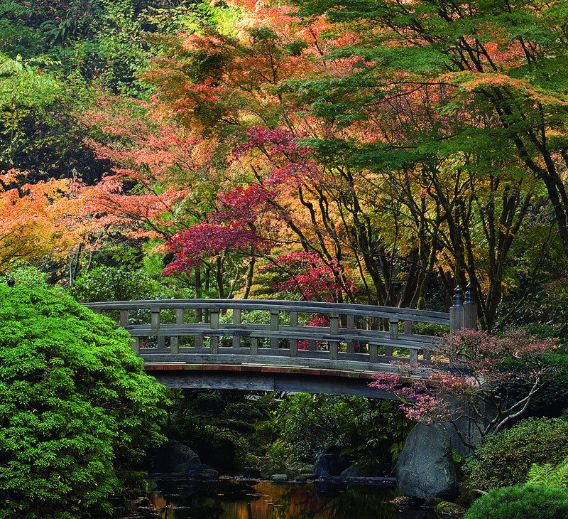 Arbor week in oregon ends saturday arbor day blog for Japanese garden portland oregon