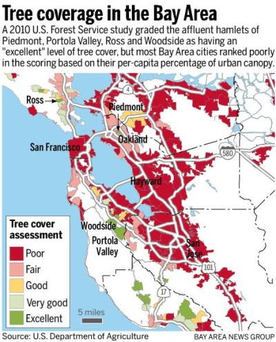 Relationship between trees and neighborhood affluence offers