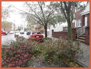 A scene from a Newark, New Jersey, neighborhood following Hurricane Sandy. Ribeiro's presentation seeks to inform people of what to do with hazardous trees in their neighborhoods.