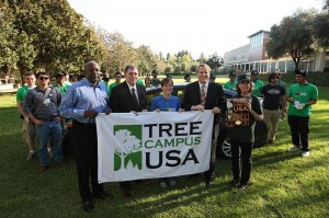 tree-campus-usa