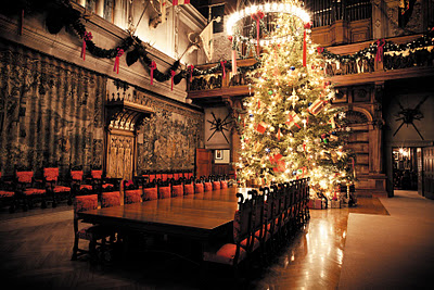 the biltmore house is known for being one of the largest holiday displays in the southeast and this year they have a 34 foot tall fraser fir illuminating - 12 Foot Christmas Tree