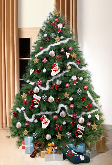 best christmas tree the five most popular trees arbor day 28696