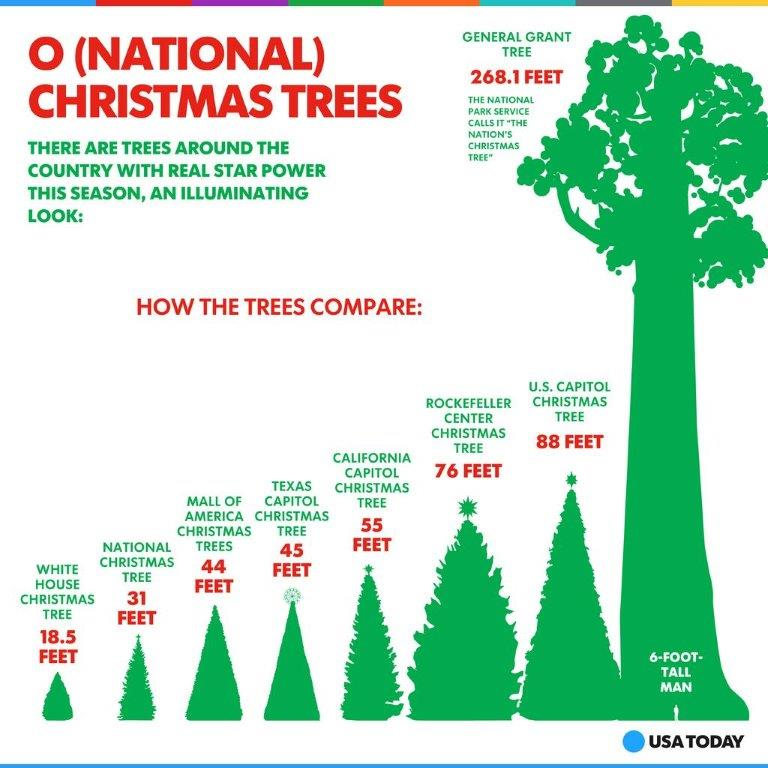 missed christmas tree number two on our countdown see it here - How Long Does A Christmas Tree Take To Grow