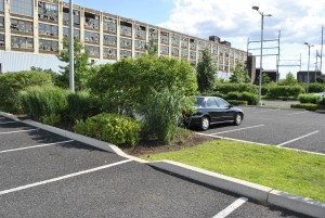 Porous Asphalt Parking Lot with Green Gutter and Vegetated Basin at Salvation Army_Louis_Cook_for_PWD