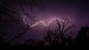 sky lightning tree