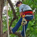 Tree Climbing Weekend