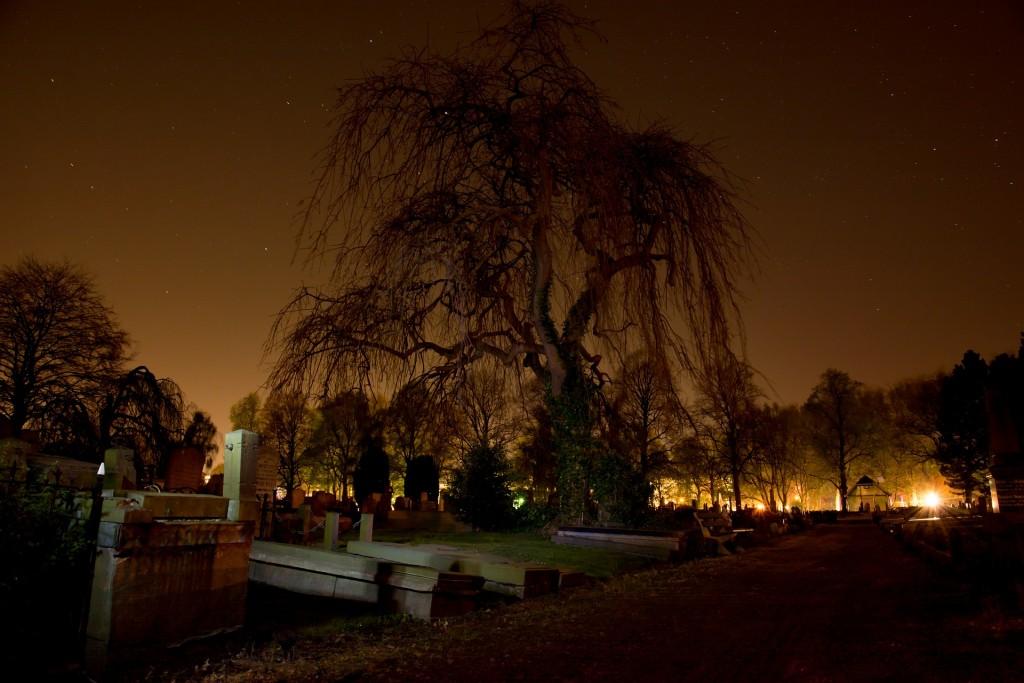graveyard-384603_1920