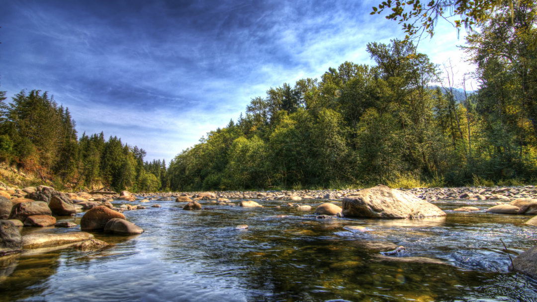 happy national rivers and water month arbor day blog