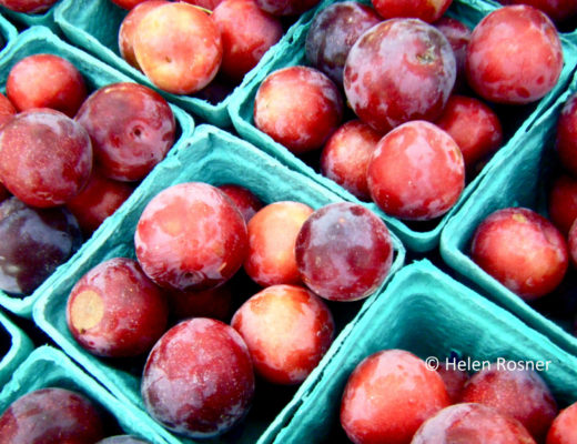 Prunus salicina © Helen Rosner_name crop