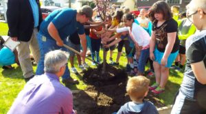Arborist and Students Planting Thunder Child Crabapple Mandan, ND