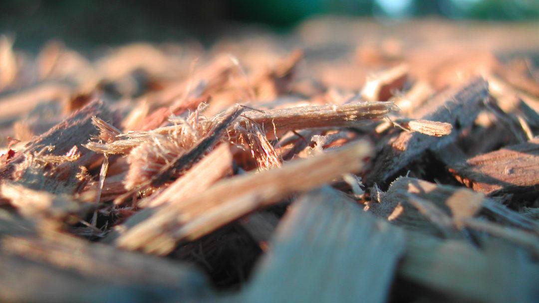 close-up-woodchips