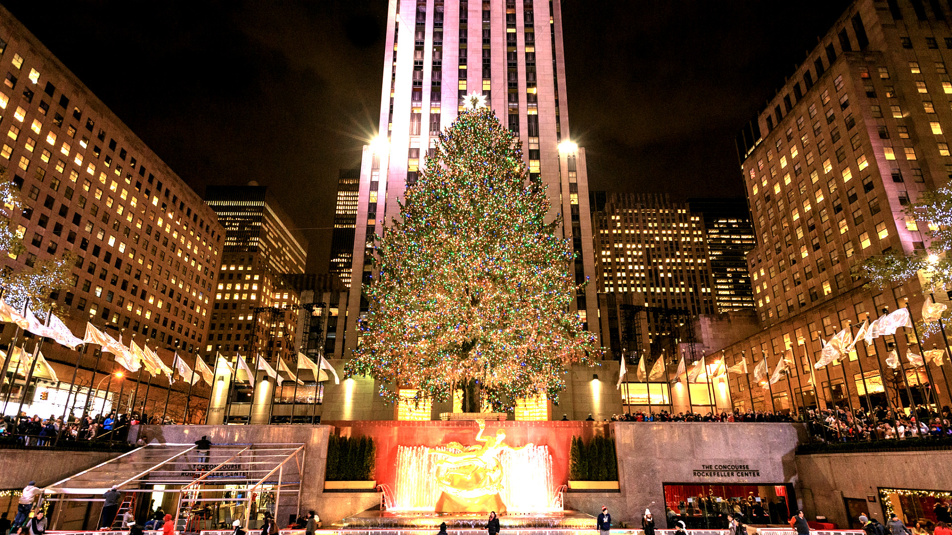 2016 Rockefeller Tree Lighting: a New York Tradition
